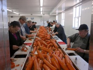 Reapers Of Hope Food Drying Program Launched