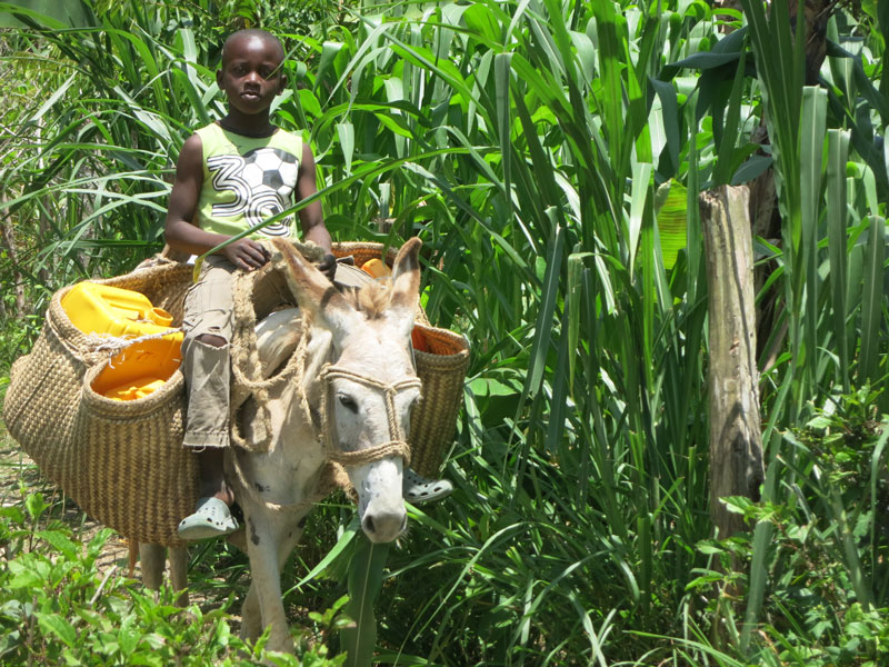 A Day With A Boy in Haiti – children's story