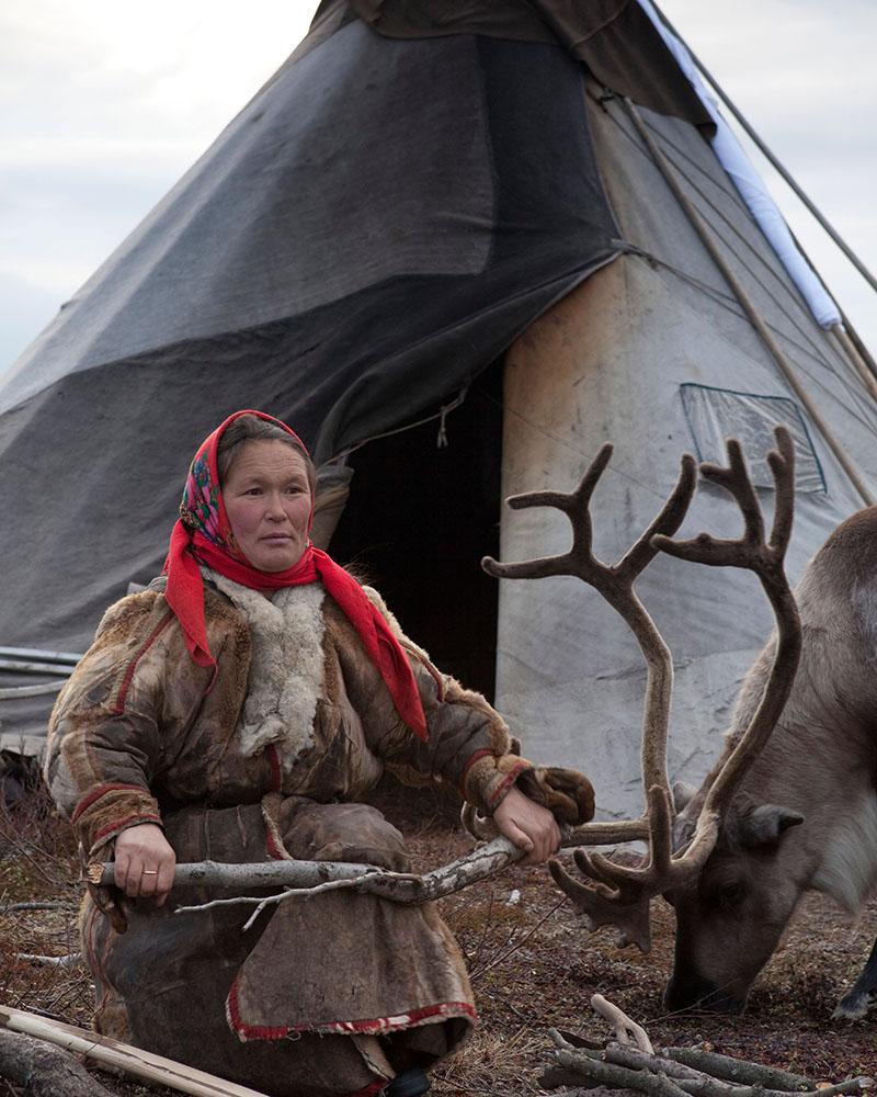 Introducing the Gospel to reindeer herders